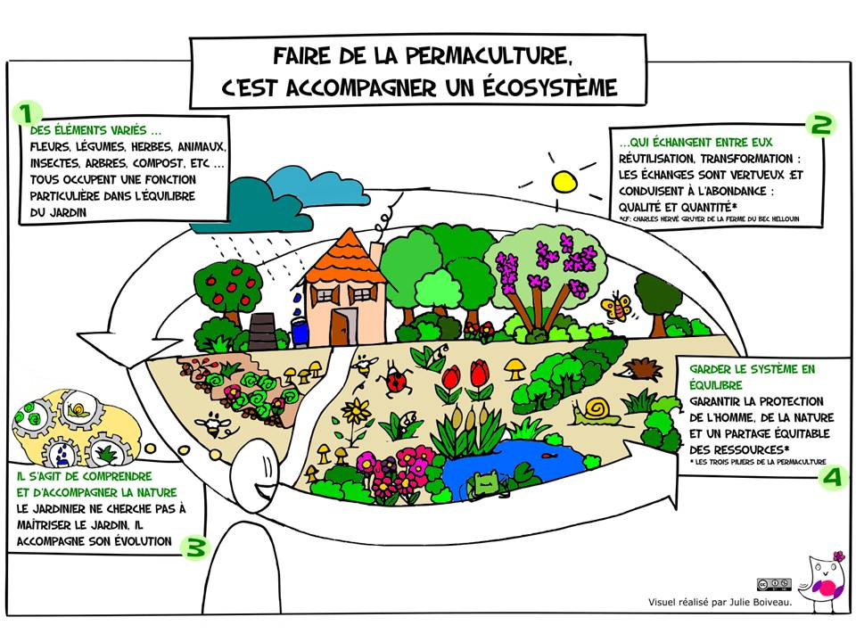 Permaculture light