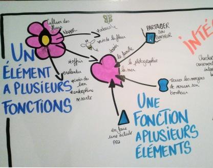 fonction éléments permaculture humaine