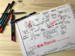 Neuro pédagogie - apprendre - apprentissage - méthode