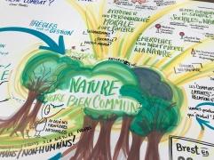 La nature Bien commun