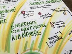 Emergence d'un droit propre à la nature