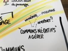 la gestion des communs négatifs